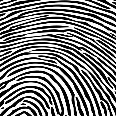 fingerprint_PRINT_SMALL